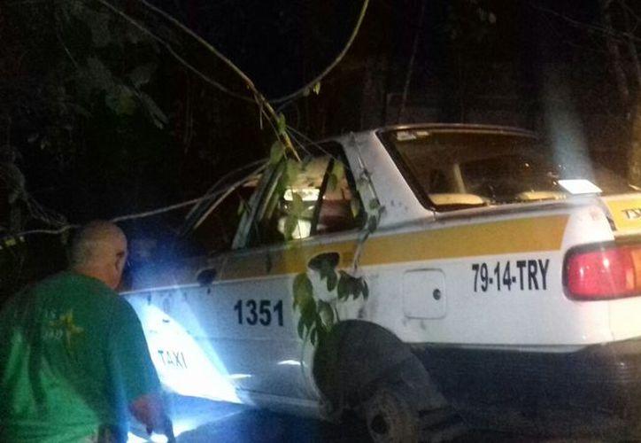 La vicefiscalía informó que el taxista desaparecido tenía cinco días de haber fallecido cuando fue localizado. (Foto: Joel Zamora/SIPSE)