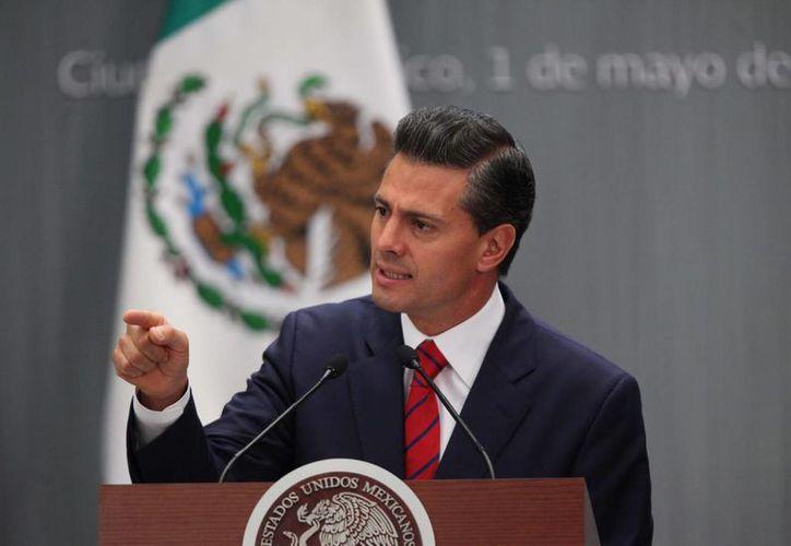 El presidente Enrique Peña promulgará este lunes la Ley General de Transparencia y Acceso a la Información Pública. (Notimex)