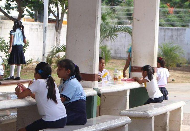 A partir de este ciclo escolar, los estudiantes de las 52 primarias de Playa del Carmen tendrán en los comedores de sus escuelas alimentos sanos.  (Luis Ballesteros/SIPSE)