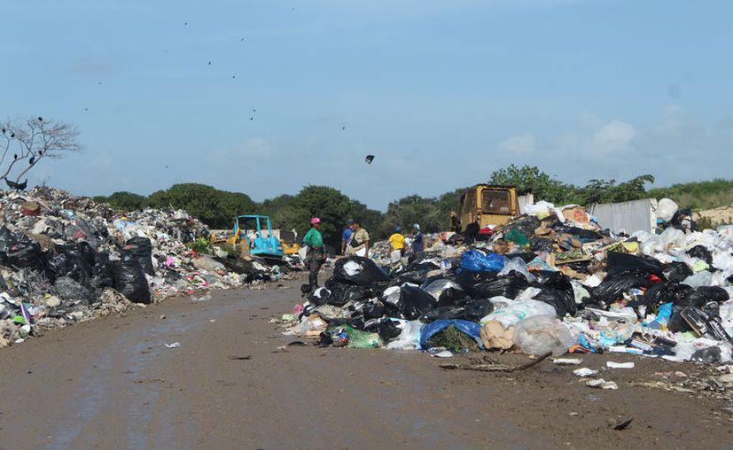 Dan a conocer la cantidad de desechos que se depositaron en los rellenos sanitarios. (Daniel Tejada/SIPSE)