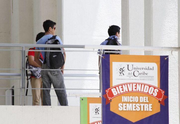 Es un proyecto de profesores investigadores de la Unicaribe. (Sergio Orozco/SIPSE)