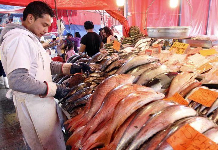 En México hay solamente una pescadería por cada 70 pollerías, indicó la Conapesca. (Archivo/Notimex)