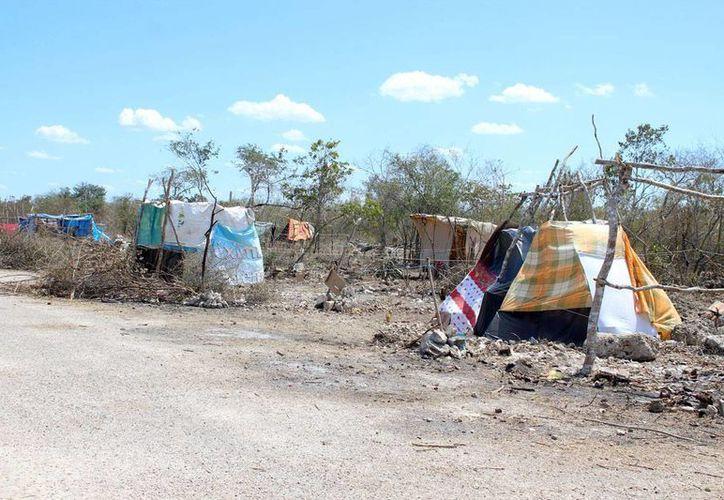 La invasión de terrenos en la comisaría de Flamboyanes va en aumento. El pasado fin de semana más personas llegaron a la zona. (Milenio Novedades)