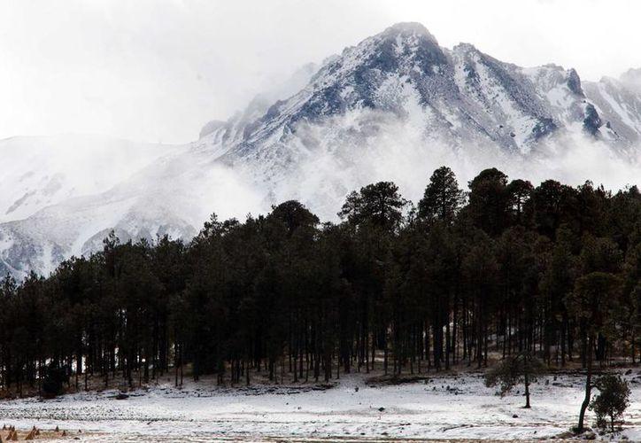 17 mil hectáreas del Nevado de Toluca podrán ser taladas según el nuevo plan de manejo de Semarnat, el cual promete un 'desarrollo sustentable' de la zona. (Archivo/ Notimex)