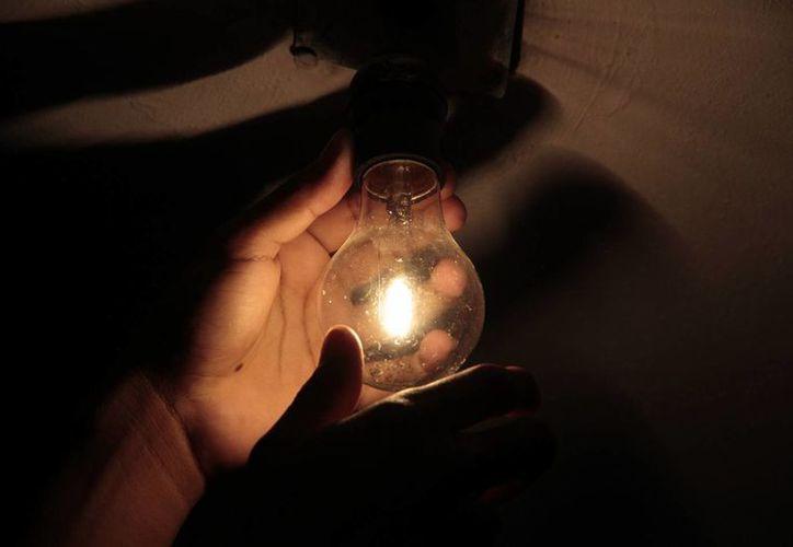 """""""Apaga la luz e ilumina el planeta"""", slogan del evento. (Tomás Álvarez/SIPSE)"""