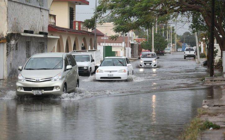 Los huracanes mueven gran cantidad de agua. En ese proceso llevan agua a lugares donde hay escasez de ésta. (Imagen ilustrativa/ Milenio Novedades)