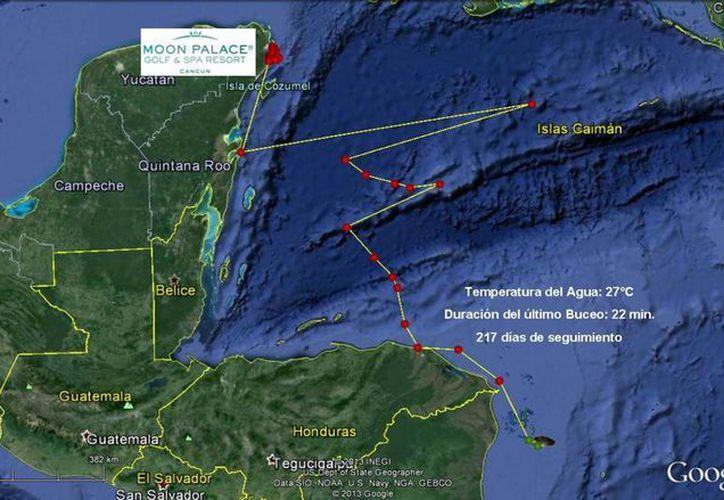 El satélite da a conocer los movimientos con puntos de color amarillo. (Cortesía/SIPSE)