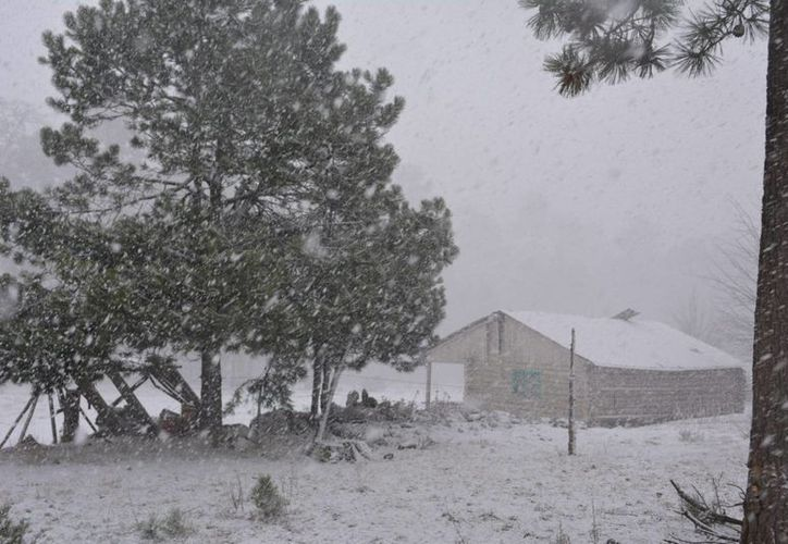 Estados como Baja California, Sonora y Chihuahua registrarán temperaturas menores a los -5 grados y nevadas. (Notimex)