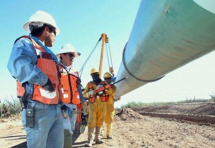 El gasoducto se encuentra actualmente en construcción en el poniente del Estado. (Milenio Novedades)