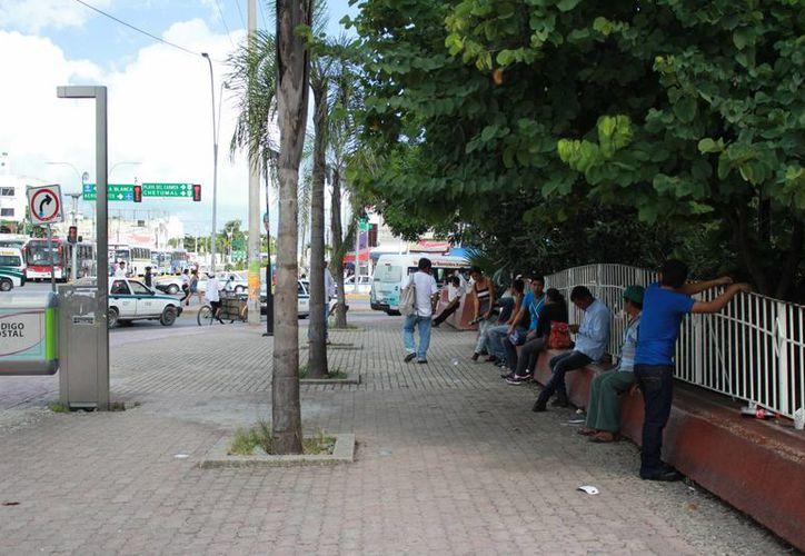 Los desempleados deberán acudir con solicitud elaborada y documentos personales. (Israel Leal/SIPSE)