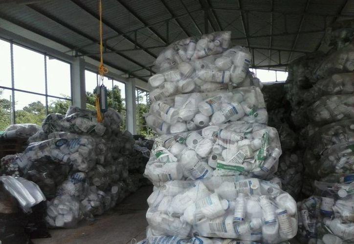 Productores y autoridades han demostrado poco interés en participar en acciones de saneamiento. (Javier Ortíz/SIPSE)