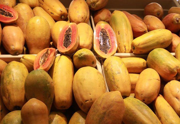 La Sagarpa está apoyando a los productores para que logren exportar. (Luis Soto/ SIPSE)