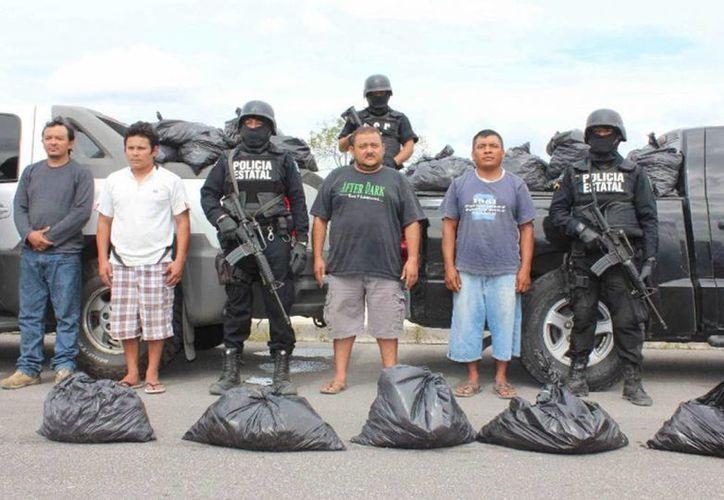 Operativos estatales han funcionado para incautar pepino de mar y generar detenciones. (Milenio Novedades)