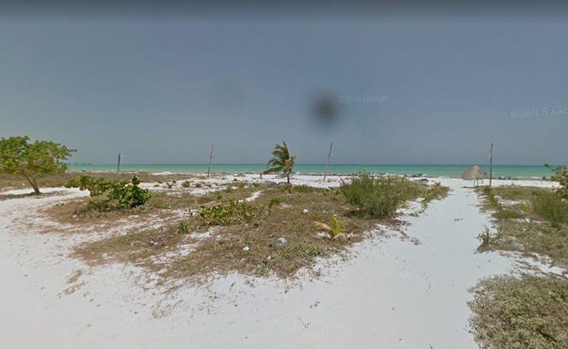 La playa de Río Lagartos es una de las más contaminadas del país, sin embargo, esto no presenta riesgos para la salud, según un estudio de la Cofepris. (Google)
