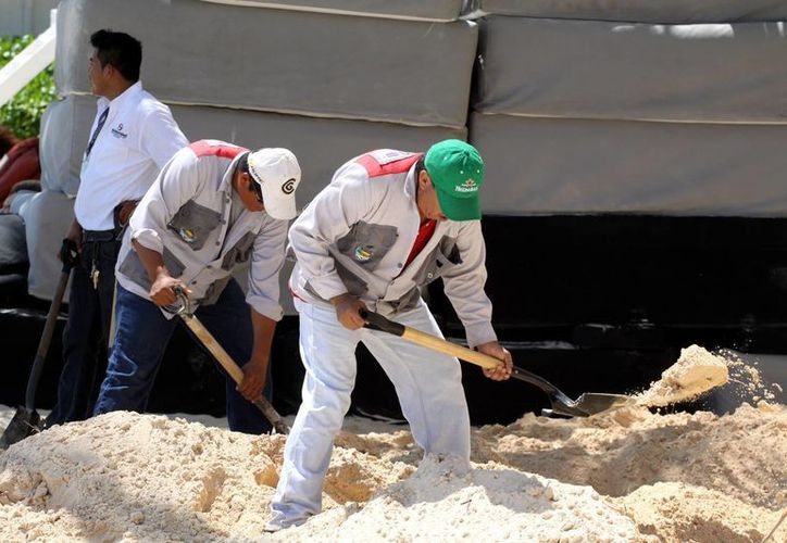Responsabilizan a la Dirección de la Zofemat de mantener limpias las playas. (Adrián Monroy/SIPSE)