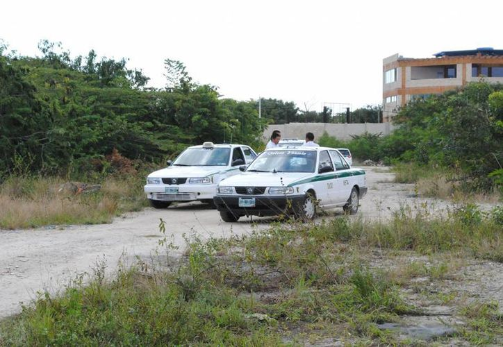 El conductor y el taxi fueron ubicados en un área verde. (Eric Galindo/SIPSE)