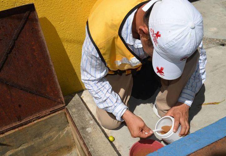 Con la llegada de la temporada de lluvias, las autoridades redoblaron los esfuerzos por abatir los nidos de mosquitos transmisores de dengue y chikungunya. (Archivo/Notimex)