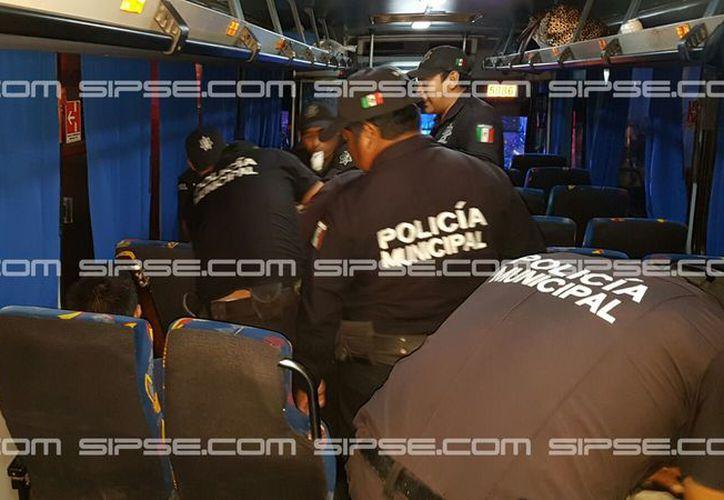 La policía municipal de Kinchil detuvo a un extranjero que viajaba en un autobús de la ruta Mérida-Celestún porque los pasajeros reportaron que viajaba armado. (SIPSE)