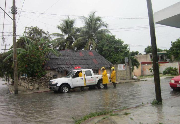 Protección Civil de Mérida informó que ya capacitó a más de 650 personas para atender los albergues distribuidos en los cuatro puntos cardinales de la capital yucateca. (SIPSE)