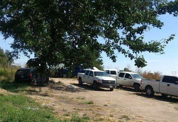 Agentes de la PGR siguen con la búsqueda de cuerpos en las fosas clandestinas encontradas en Jalisco. (Foto: cortesía, publicada  en MILENIO)