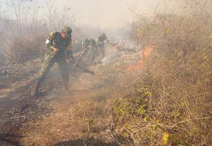 Ejército Mexicano se reportó listo para atender los incendios en Yucatán. (SIPSE)