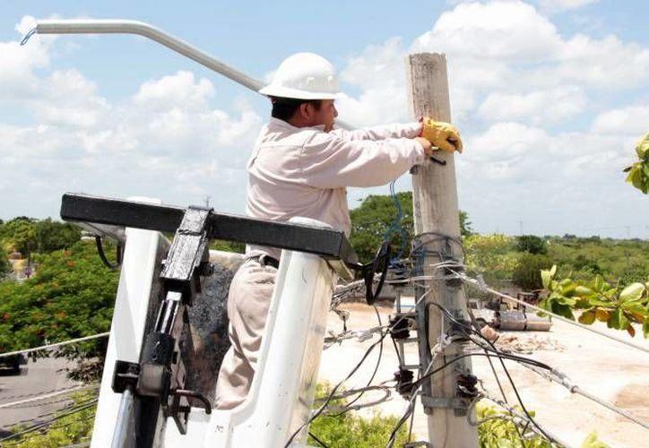Dan mantenimiento a los circuitos, líneas de transmisión y puntos de interconexión más importantes. (Archivo/SIPSE)