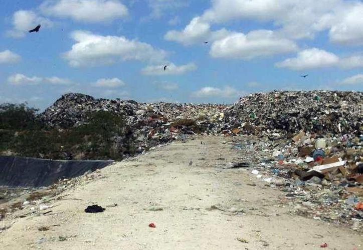 Actualmente, el relleno sanitario de Progreso cuenta con demandas por daño ecológico. (Milenio Novedades)