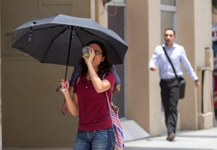 Pronosticaron temperaturas de hasta 32 grados durante los próximos días. (Milenio.com)