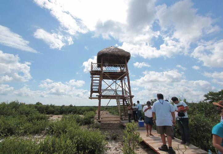 La estructura se localiza hacia la Isla de la Pasión. (Gustavo Villegas/SIPSE)