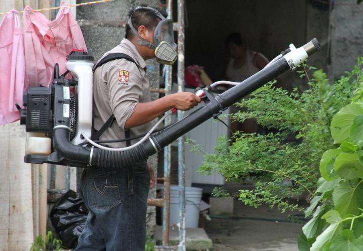 El equipo de vectores del municipio de Solidaridad realiza constantemente operativos de combate del mosquito transmisor del dengue.  (María Mauricio/SIPSE)