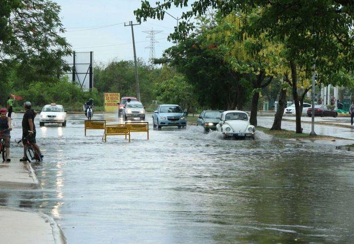 Más allá del pronóstico de lluvias que hay para este fin de semana en Yucatán, este viernes y sábado las temperaturas oscilarán entre los 35 y los 39 grados para Yucatán y Campeche.  (José Acosta/Milenio Novedades)