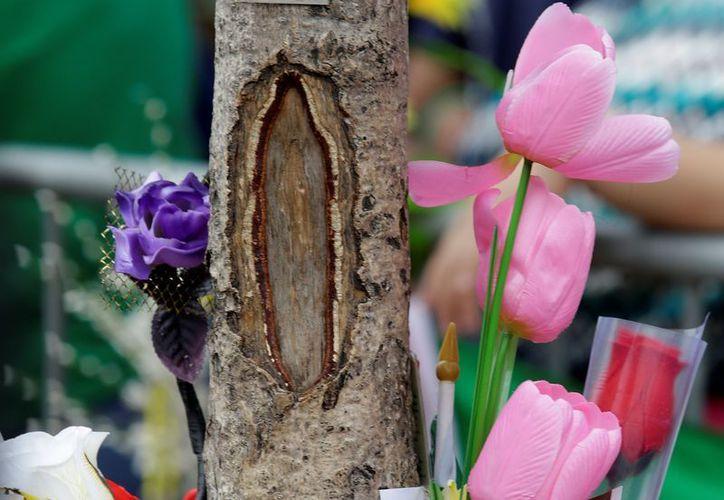 Los feligreses han llenado el árbol de flores y veladoras. (Agencias)