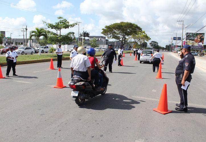 En Bacalar y Othón P. Blanco, distribuyen información para concienciar a los conductores y que eviten riesgos al manejar. (Joel Zamora/SIPSE)