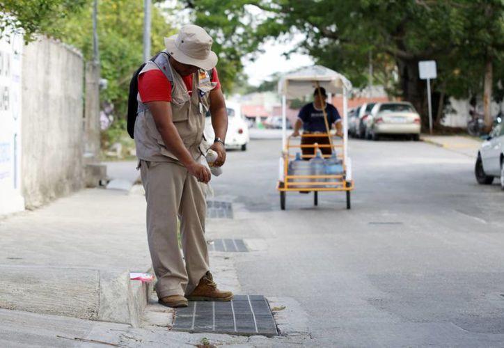 El Instituto Municipal de Salud pide mantener las medidas preventivas para evitar la proliferación de la enfermedad. (Milenio Novedades)