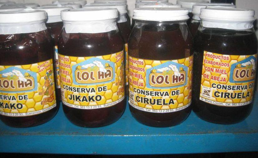 La miel de la abeja melipona tiene propiedades curativas conocidas a nivel mundial. (Javier Ortiz/SIPSE)