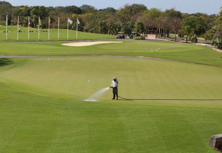 Entre las empresas que ostentan la certificación Earth Check se encuentran campos de golf. (Adrián Barreto/SIPSE)