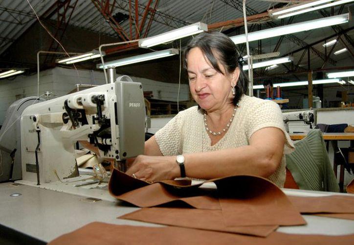 Reiteran apoyo a mujeres a través de créditos blandos para la apertura de sus negocios. (Milenio Novedades)