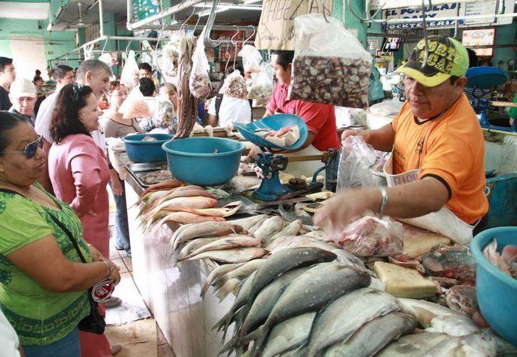 La Sagarpa gatantizó el abasto de pescados y mariscos durante la Cuaresma y Semana Santa. (SIPSE)