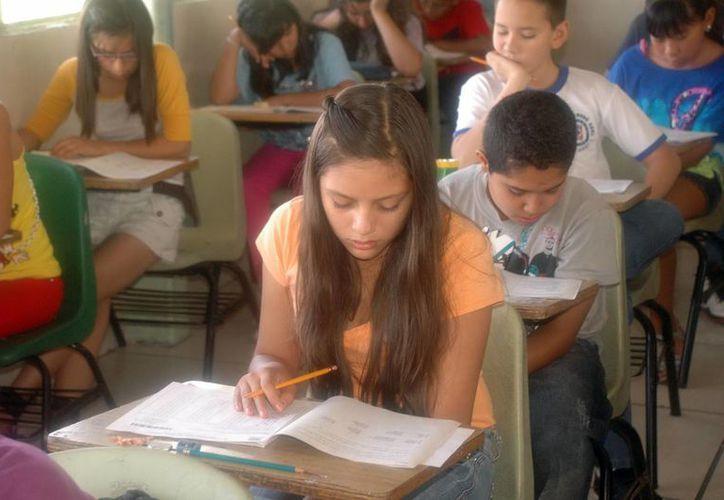 Los alumnos sobresalientes representan 0.76 por ciento de la población escolar. (Archivo Notimex)