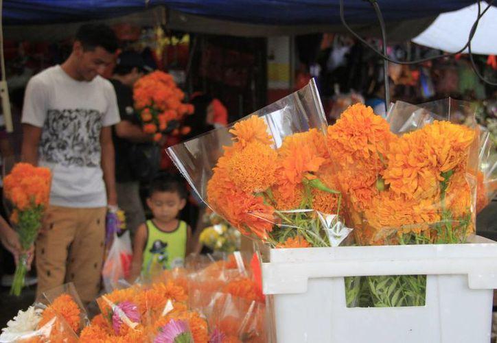 En el Mercado 23 la venta de flores de cempasúchil terminará hasta el 2 de noviembre, cada ramo cuesta alrededor de 22 pesos. (Consuelo Javier/SIPSE)
