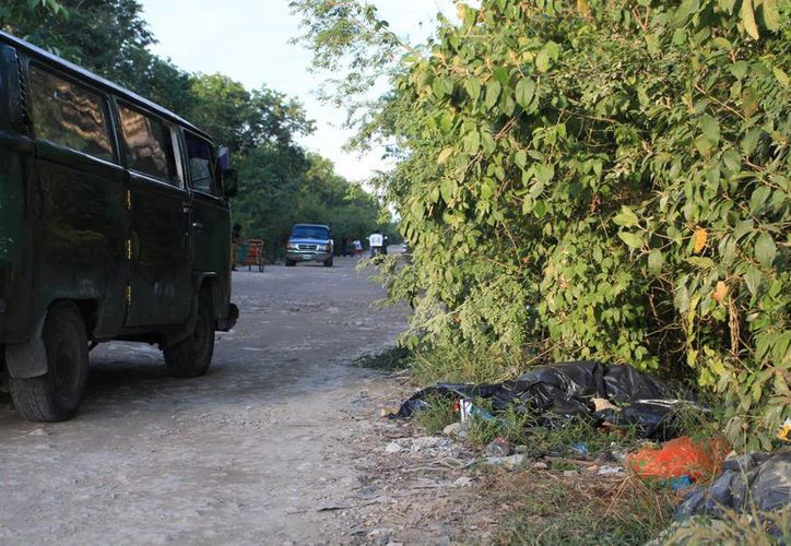 El cuerpo del animal, que se presume es un jaguar hembra, estaba ayer dentro de una bolsa negra y ya con moscas. (Adrián Barreto/SIPSE)