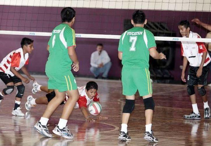 El voleibol de sala será una de las disciplinas que se practicarán durante la eliminatoria municipal. (SIPSE/Archivo)