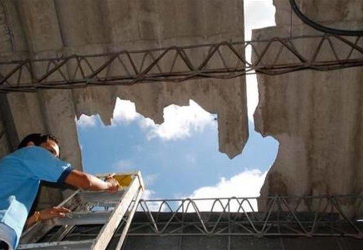 El mamífero cayó sobre el techo construido por un material poco resistente, atravesándolo hasta terminar sobre el cuerpo de Joao (FotoContexto)