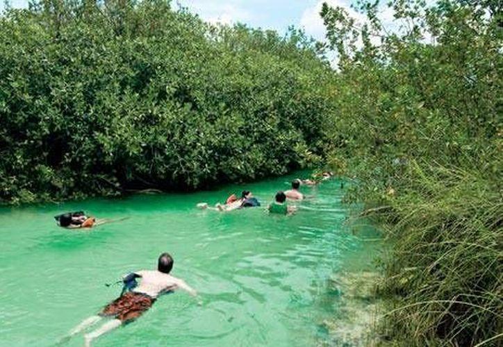 Existen proyectos de conservación enfocados al ecoturismo en la reserva. (Israel Leal/SIPSE)