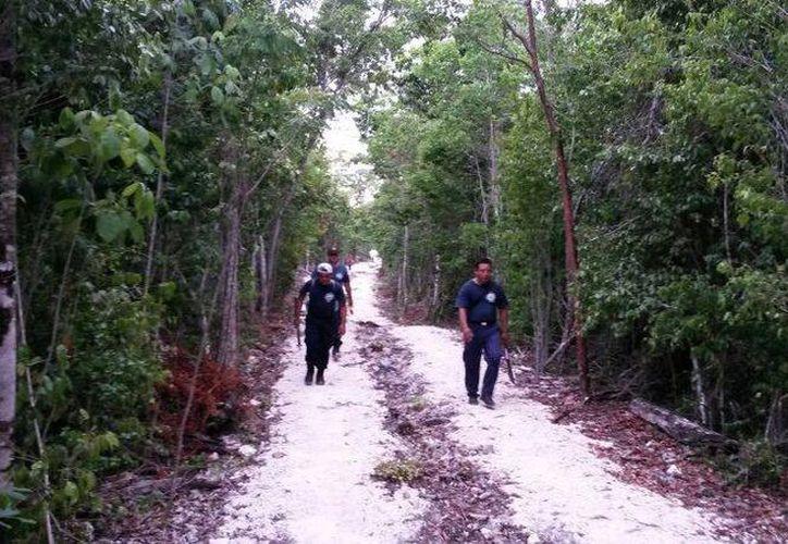 Luego de una intensa búsqueda, de 36 horas, en la selva de Cozumel, Miguel Ángel Rivero, fue hallado. (Irving Canul/SIPSE)