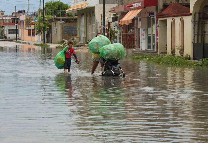 El Atlas de Riesgo permite ubicar las zonas vulnerables a desastres naturales; el de Cozumel fue elaborado en 2011. (Gustavo Villegas/SIPSE)