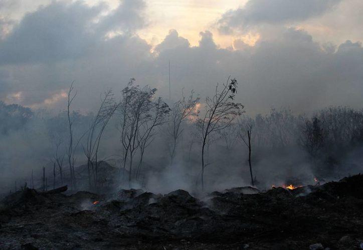 Los elementos de Bomberos atendieron los reportes de incendios. (Archivo/SIPSE)