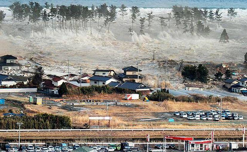El tsunami ocurrido en 2013 es un parámetro para lo que los investigadores llaman 'El Gran Terremoto', el cual tendría cabida en los próximos años. (AP)