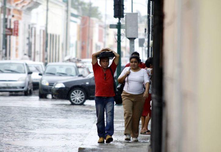 La tarde de ayer se dejó caer una lluvia que ocasionó encharcamientos en la ciudad y agarró desprevenidos a varios meridanos. (Christian Ayala/SIPSE)