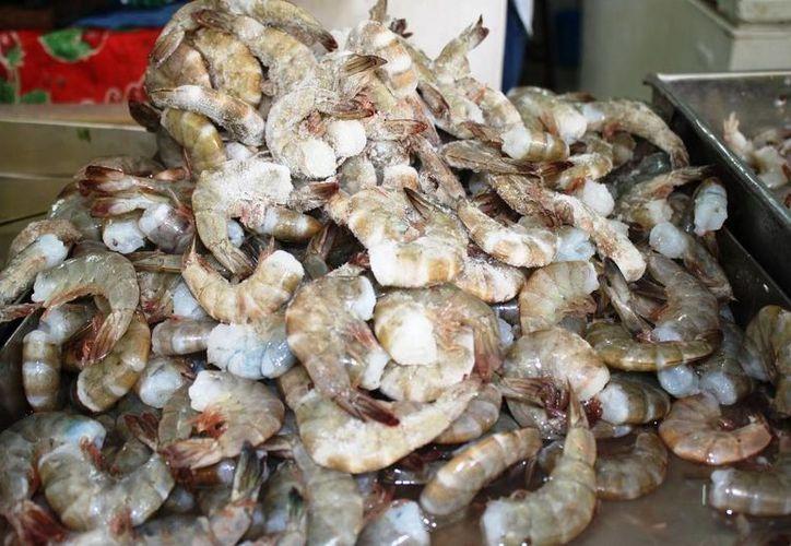 El camarón coctelero ha registrado un 80% menos de producción en el país, y ha pasado de 120 a 160 pesos por kilo. (Edgardo Rodríguez/SIPSE)